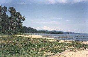 Playa de Puerto Viejo y Cocles
