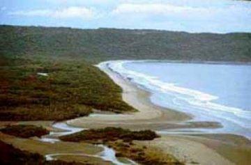 Playa Naranjo