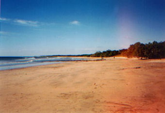 Playa Avellanas