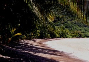 Playa San Josecito (Golfito)